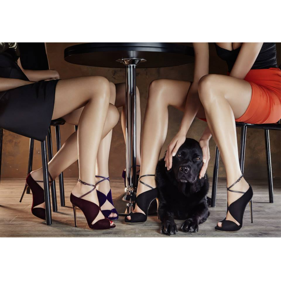 casadei velvet heels